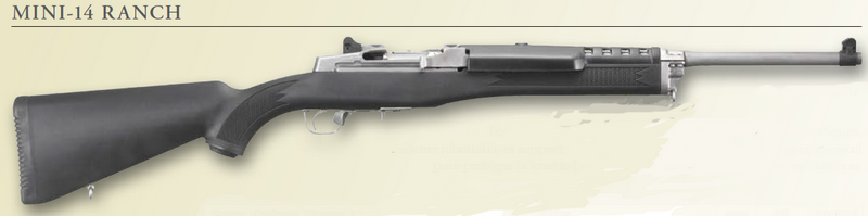 ruger mini 14 armurerie barraud toulouse 31